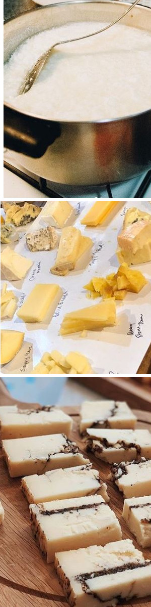 Cheese Tasting in Italy